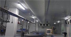 伊利集团—奶制品生产车间